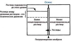 Обратноосмотические установки и системы - фильтры обратного осмоса